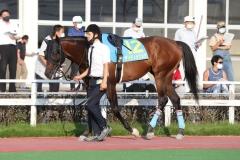 210713 金沢スプリントカップ-01
