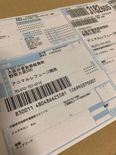 IMG_8518.jpg