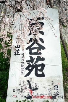 2021_haradani_40.jpg