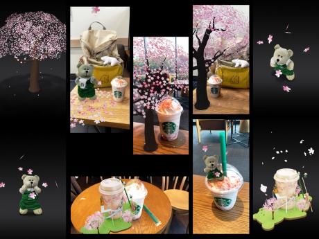 sakura_stb.jpg