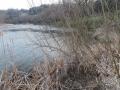 川岸の湿地