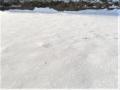 片隅のうすら雪