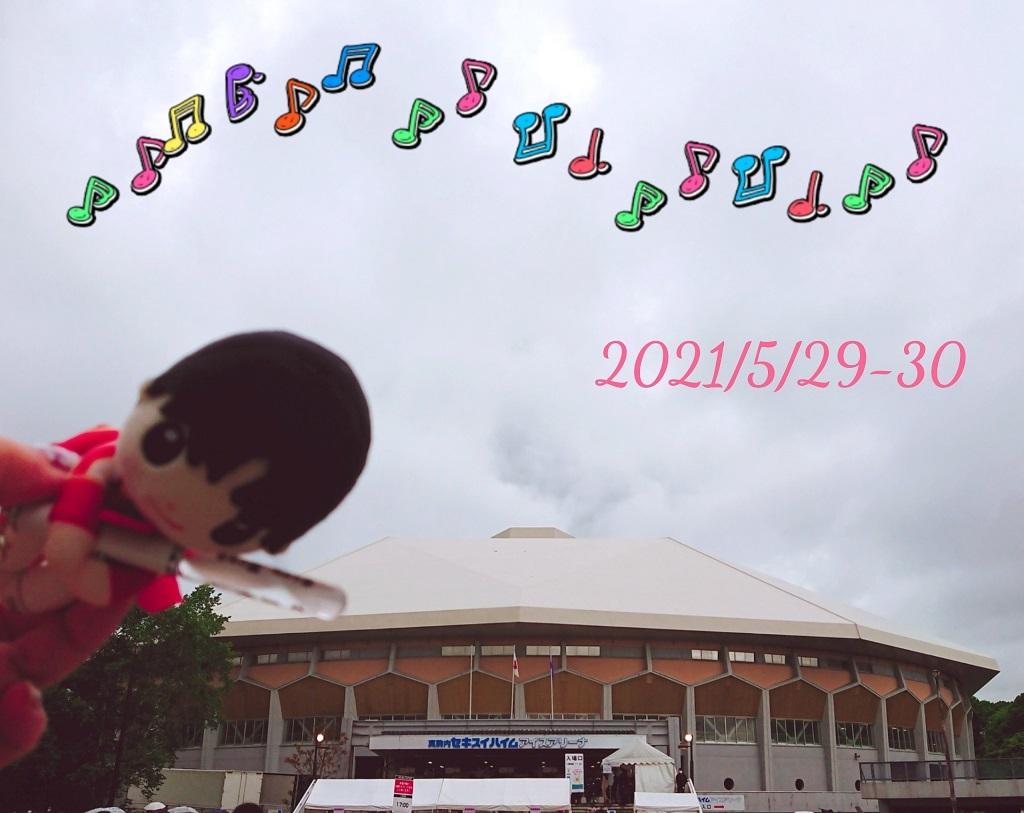 21052930SZ10TH札幌