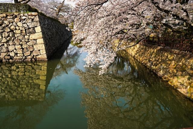 210331姫路城6