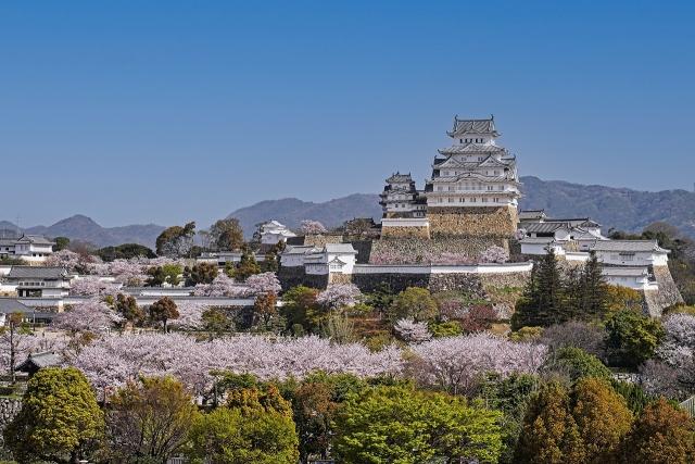 210402姫路城1