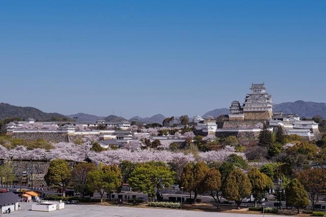 210402姫路城3