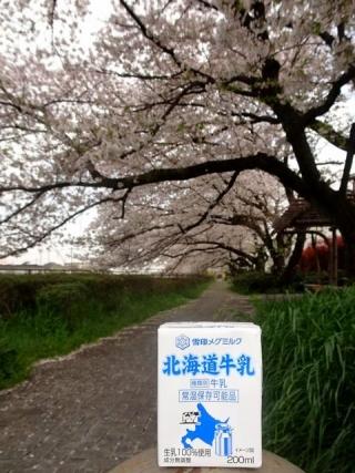 北海道牛乳 (2)