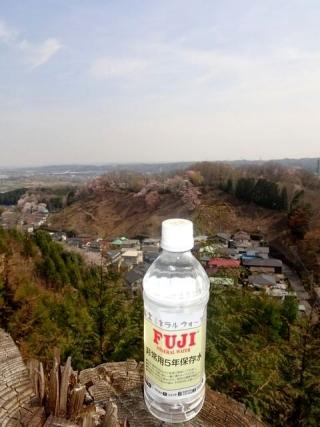 富士水 (4)