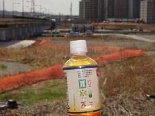 東北六県茶補足 (2)