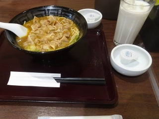 カレー肉そば (7)