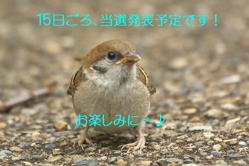 030_202106102304139cc.jpg