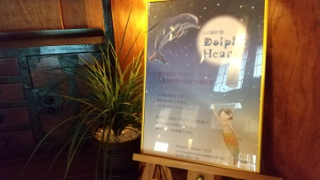dolphinheart 看板