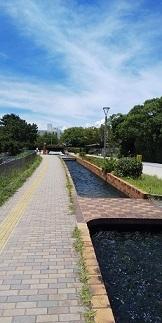 DSC_4516大濠公園