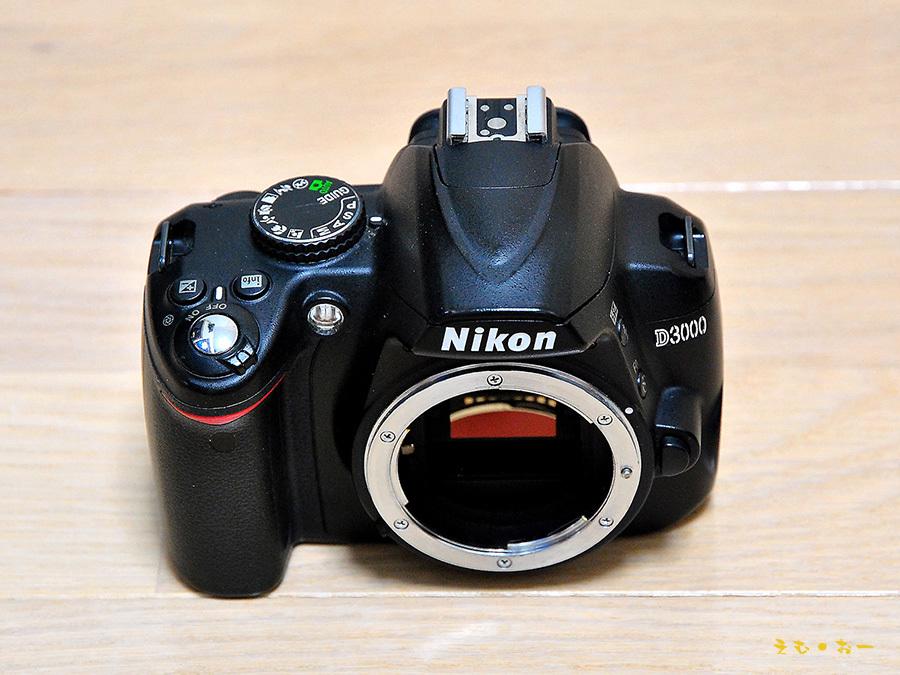 D3000-1b.jpg