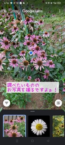 210727_Echi01.jpg
