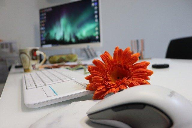 office-4962107_640.jpg
