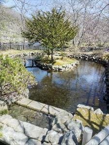 千歳 名水ふれあい公園