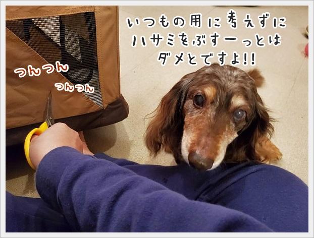 fc2_2021-03-11_03.jpg