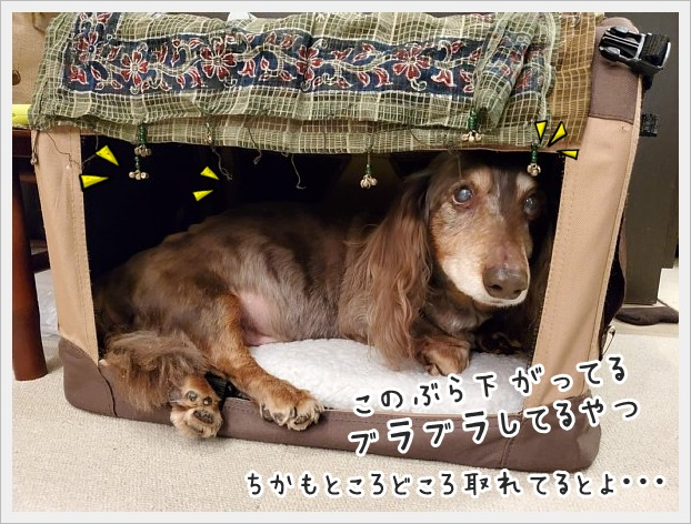 fc2_2021-03-12_08.jpg