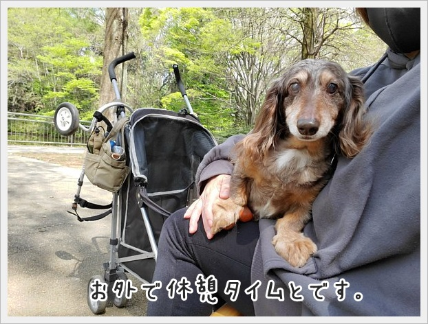 fc2_2021-04-06_01.jpg