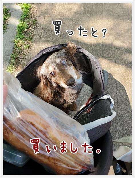 fc2_2021-04-11_011.jpg