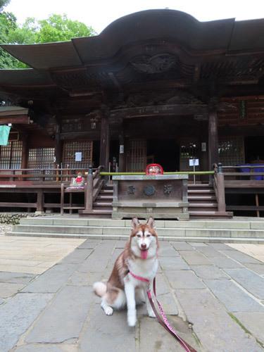 深大寺のマドレーヌ