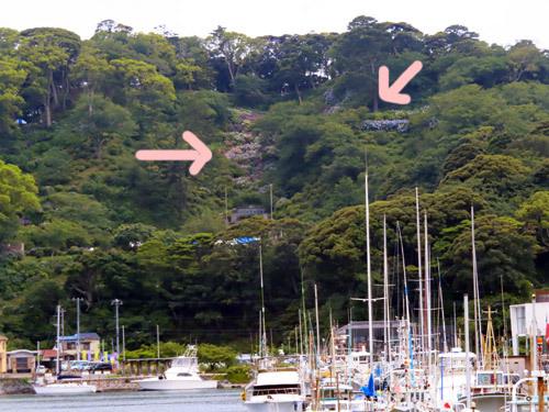 下田港と下田公園