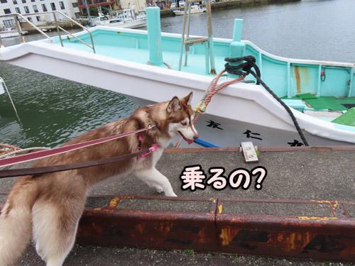 船に乗りたいマドレーヌ