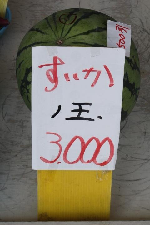 IMG_6461 (1)