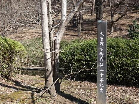 きれぎれの風彩 森林公園:その他-0228_210323-06