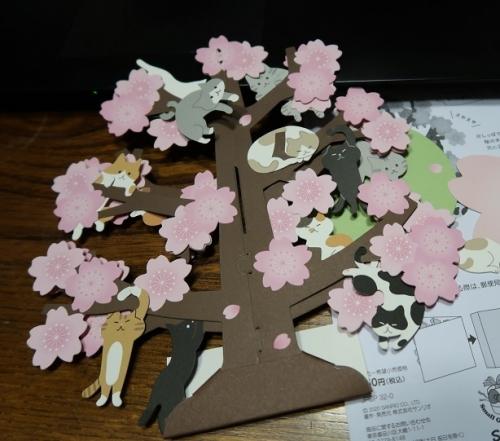 猫桜カード