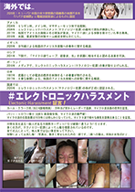 テクノロジー犯罪身体攻撃フライヤー裏PDF