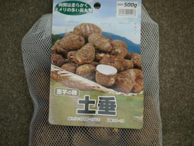サトイモ 土垂