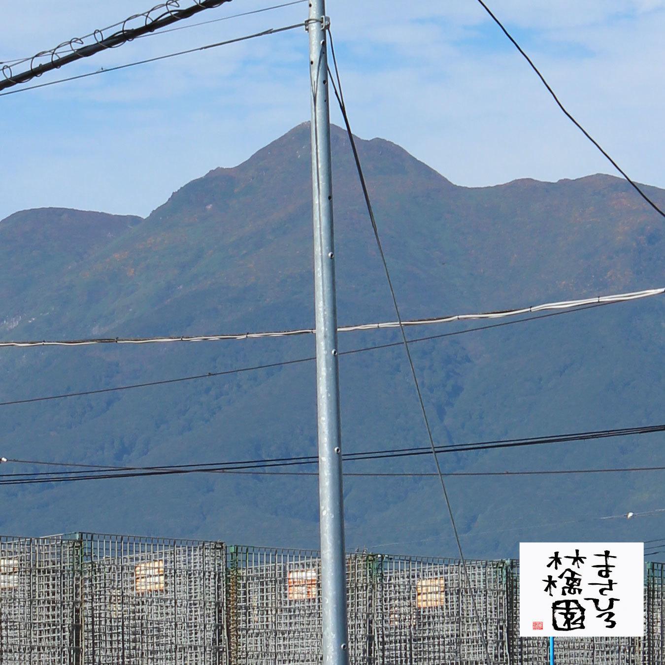 20210921事務所前岩木山