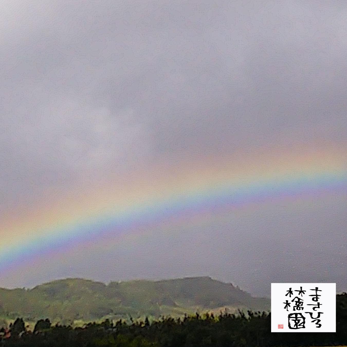 20210924朝の虹