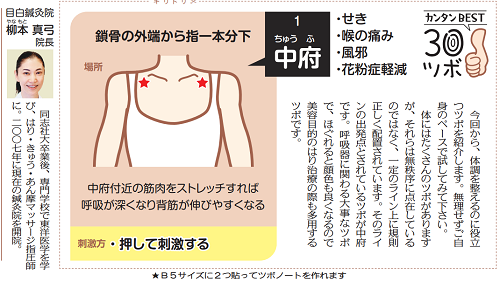 東京新聞の連載がはじまりました 中府(ちゅうふ)