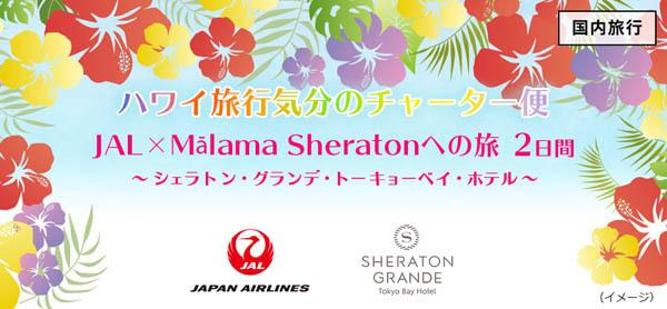 「ハワイ旅行気分のチャーター便 JAL×Mālama Sheratonへの旅2日間」