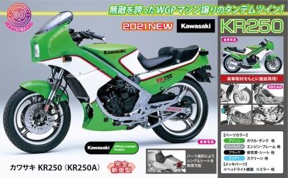 カワサキ KR250(KR250A)アオシマ1/12プラモデル