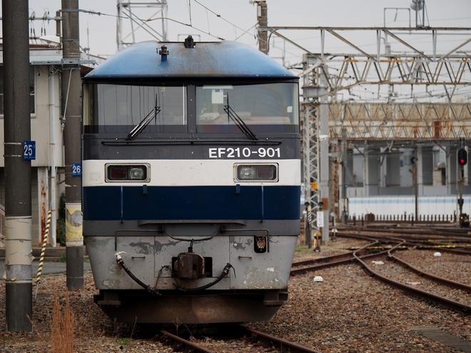 笠寺駅 鉄撮り