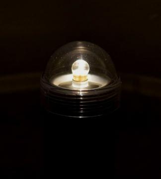 light48.jpg