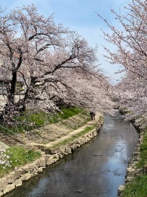 元荒川2021-1