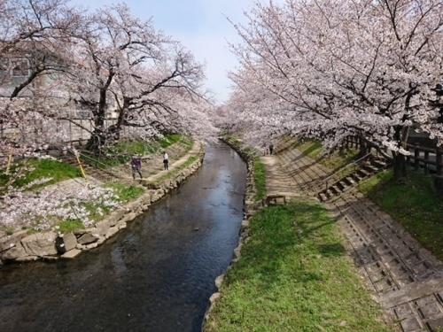 元荒川2021-2