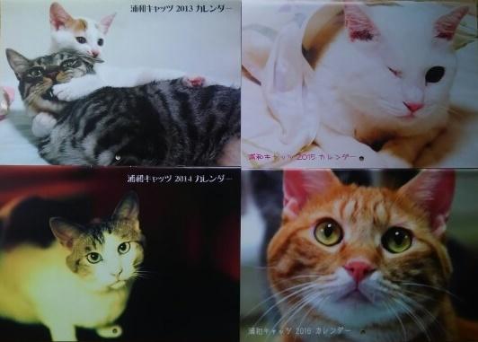 浦和キャッツカレンダー1