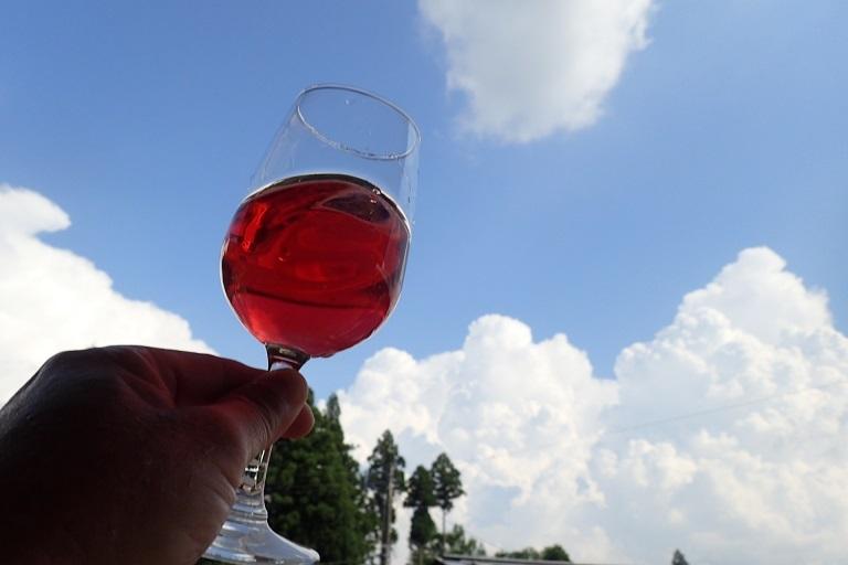 ナワシロイチゴ酒2