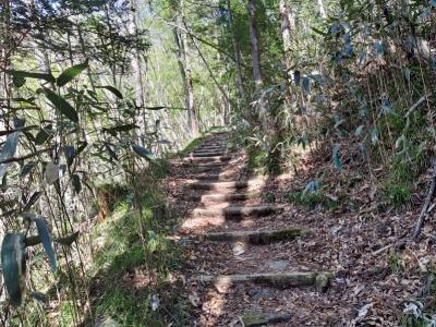 七つ滝への道