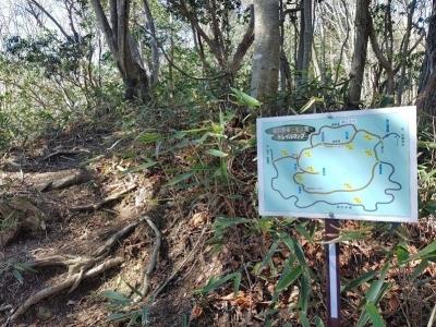 柳沢林道への分岐