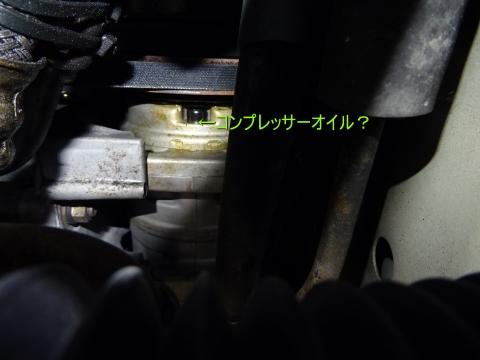DSC04990.jpg
