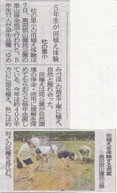 杜小の田植え報道