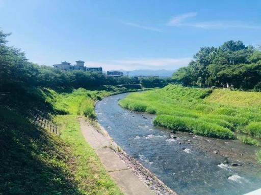 浅野川のゴミ拾い