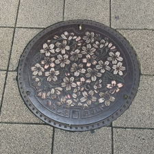 三島市のマンホール(桜・カラー)